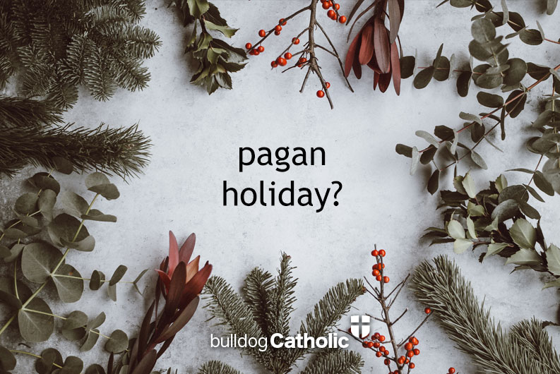 q ive heard that christmas is a pagan holiday and that we christians should not celebrate it because it is based off some pagan celebration of the birth - Do Catholics Celebrate Christmas